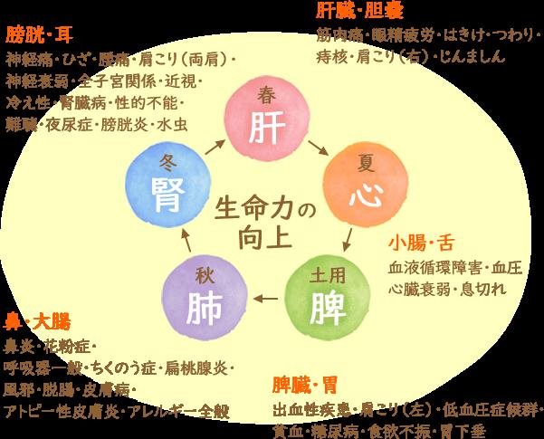 鍼灸によって得られる効果の図